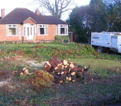 garden clearance 0b