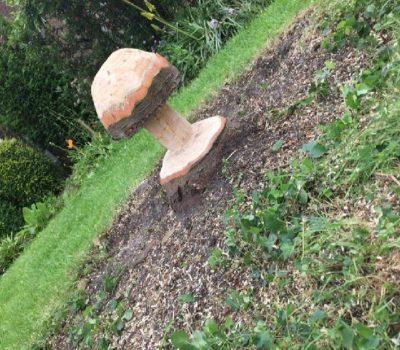 Carved mushroom on tree stump