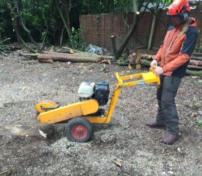 Stump grinding 0